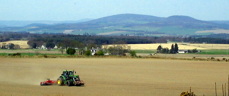 Rolling Cereals at Whitehouse
