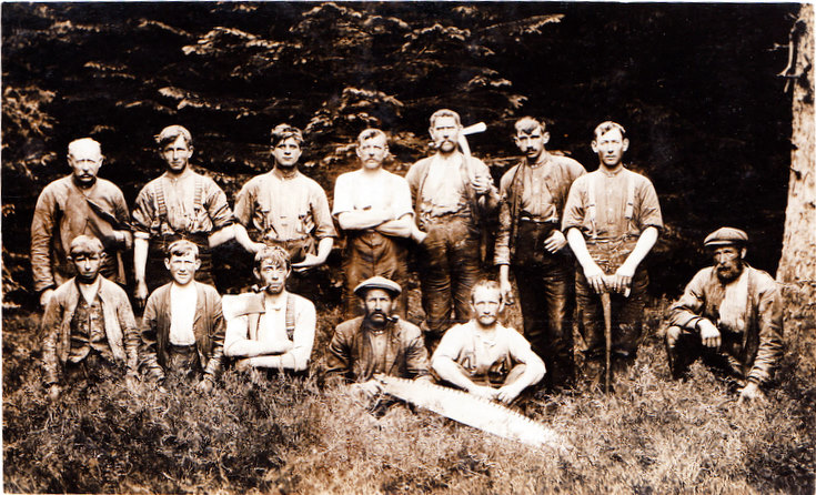 A group of Foresters