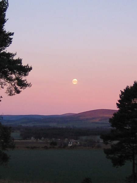 Early morning and a setting moon