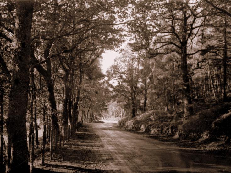 Road at Brux