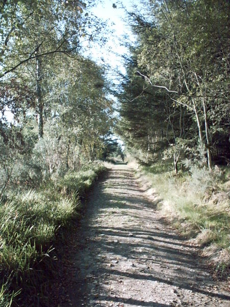 The Old Aberdeen Road at the foot of Bennachie