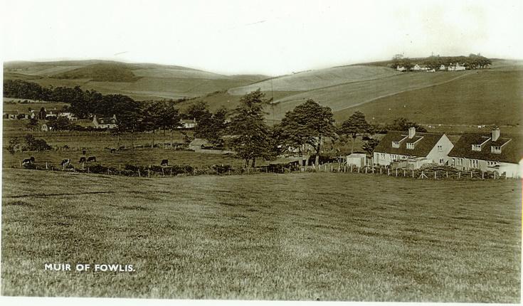 Muir of Fowlis