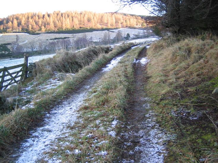 Kist Hill from Whitehouse Estate farm track