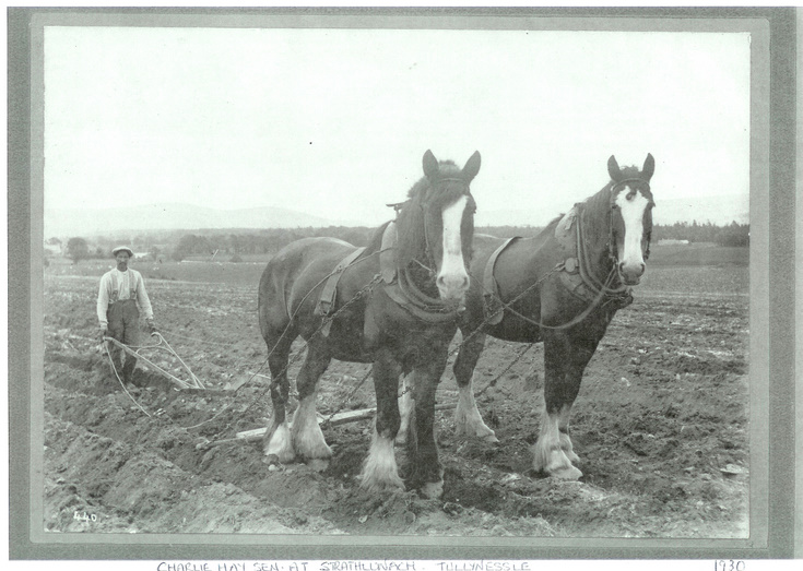 Ploughing at Strathlunach, Tullynessle.