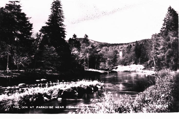 River Don at Paradise