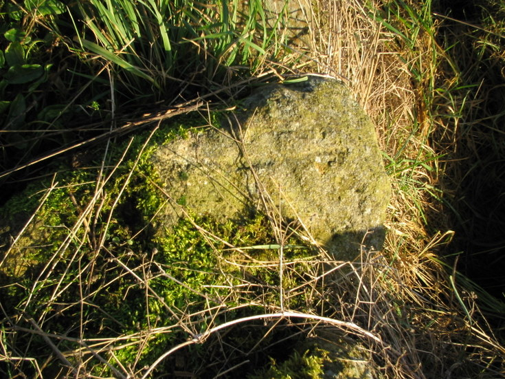 Cross incised stone near Tertowie