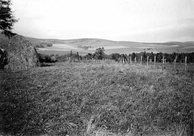 View across farmland at Shannock