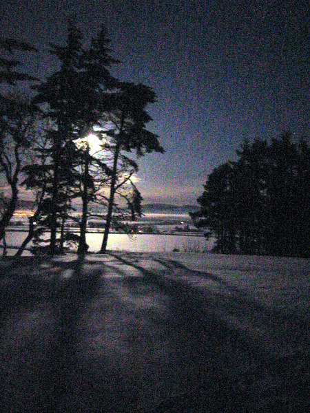 Alford Vale in Winter by Moonlight