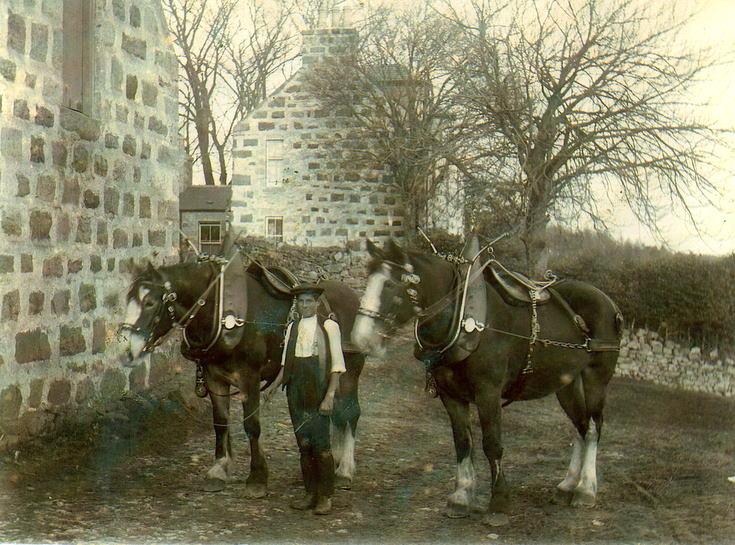 Robert Dunn at West Eninteer Farm, Muir of Fowlis