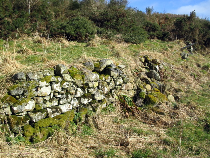 Remains of Croft at Denburn, Whitehouse.