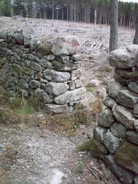 Neat Drystone Dyke at Bennachie